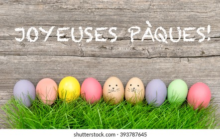 Colorful easter eggs in green grass. Funny holidays decoration. Joyeuses Pa?ques - Happy Easter french