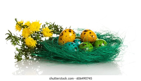 Colorful Easter eggs in the nest and flowers isolated on white background.