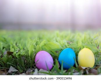 Colorful eggs on green grass for Easter egg hunt