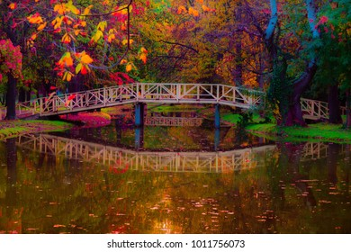 Colorful fairy-tale park on a late autumn afternoon.