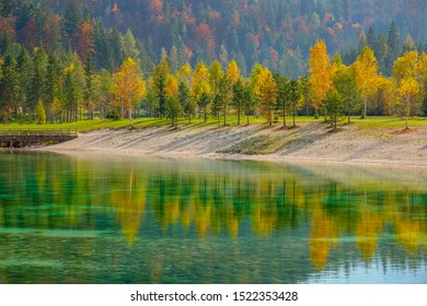 Colorful fall colored trees are reflected on the calm surface of the breathtaking emerald lake in Slovenia. Breathtaking shot of a calm pond reflecting the autumn colored forest covering the mountains