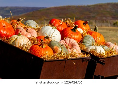 Colorful fall display of a variety of pumpkins sitting in straw in old farm equipment with copy space for text