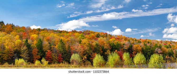 Colorful fall forest foliage in panoramic New England landscape scene