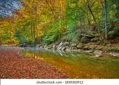 Colorful Fall leaves along War Creek next to Turkey Foot Campground in the Daniel Boone National Forest near McKee, KY. - Shutterstock ID 1839303913