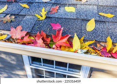 Colorful fall leaves in the gutter on a roof
