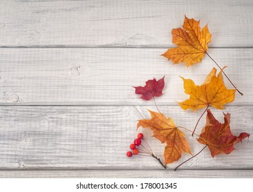 Colorful Fall Leaves and Red Berries on White and gray wood background with space or room for copy, text, words.  Horizontal