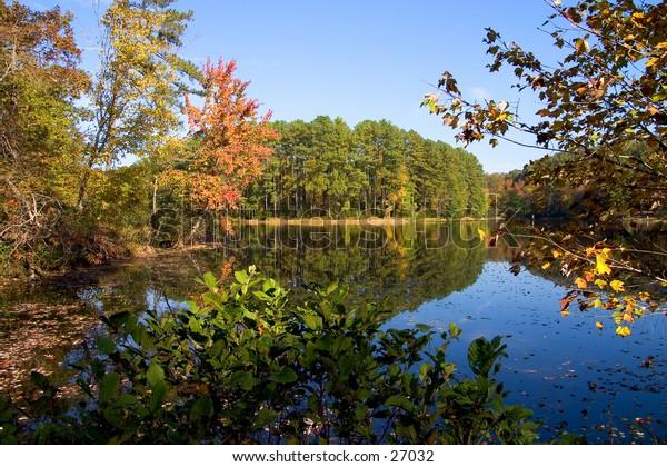 A colorful fall scene by Simpkins Pond, Lake Wheeler Park, Raleigh, North Carolina