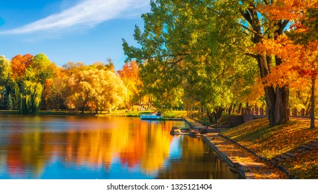 Colorful fall. Scenic autumn landscape with multi colored trees on lakeside