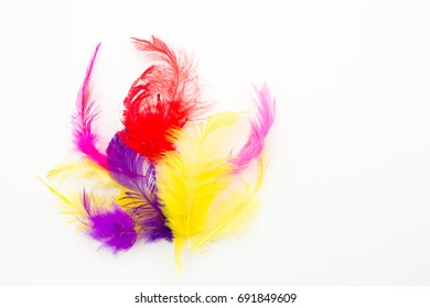 Colorful feathers lying on white table