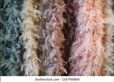 Colorful feathers pattern or background