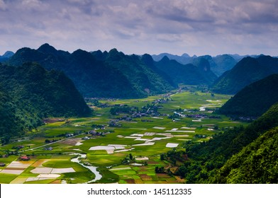 Colorful field in valley in Northern of Vietnam