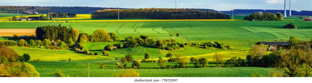 Colorful fields in belgian countryside panoramic view with windmill on horizon, Belgium