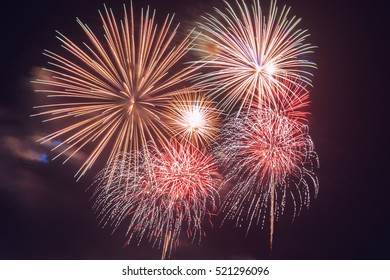 colorful firework for celebration