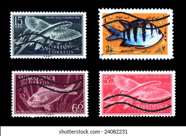 Colorful Fish Postage Stamps Foreign issue canceled
