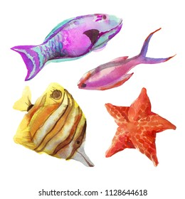 Colorful fish set with star.Handdrawn watercolor illustration
