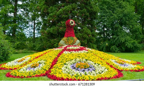 A colorful floral figure of a bird's fire on the island of Mainau.