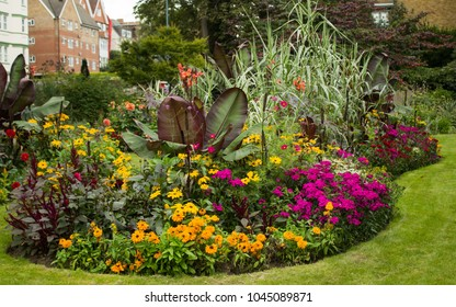 Colorful Flower Bed in Park with Red Abyssinian Banana (Ensete Ventricosum Maurelii) Planted in the Center