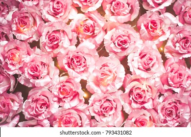 Colorful flower bouquet from pink roses with lights for use as background. Closeup.