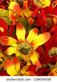 Colorful flower display in autumn.