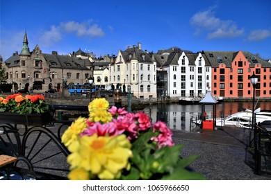 Colorful flower in front of narrow cobblestones of Stavanger Norway street