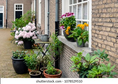 Colorful flowering potted plants in a historic beguinage in the Dutch city of Breda, North Brabant.