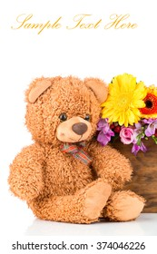 Colorful  flowers in the box and a teddy bear on white background