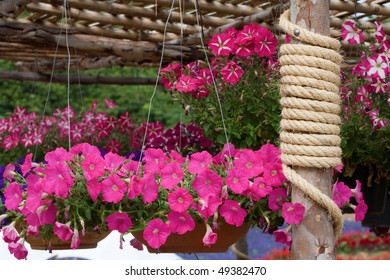 Colorful flowers garden with rope around a timber.