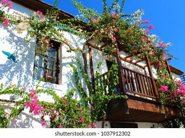 Colorful flowers in the house in  Kalkan, Antalya.