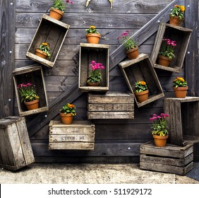 Colorful Flowers in pots in wooden boxes shelves on a wooden background