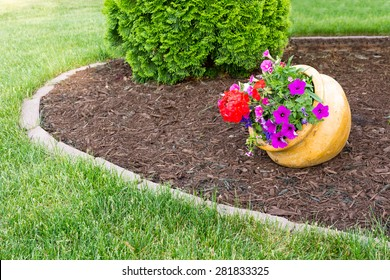 Colorful flowers with purple petunias and red geraniums growing in a tilted flowerpot in a landscaped garden with formal beds and an evergreen arborvitae alongside in a neat green lawn
