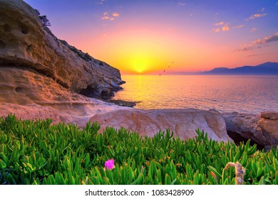 Colorful flowers with sea and sunset at the background, Matala, Crete, Greece.