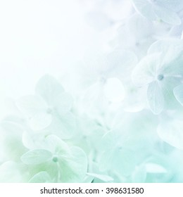 colorful flowers in soft color and blur style on mulberry paper texture for romantic background
