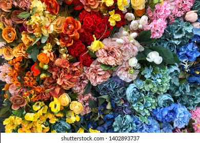 Colorful flowers texture. Closeup different blooming flowers wall. Nature background