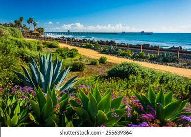 Colorful flowers and view of the fishing pier at Linda Lane Park, in San Clemente, California.