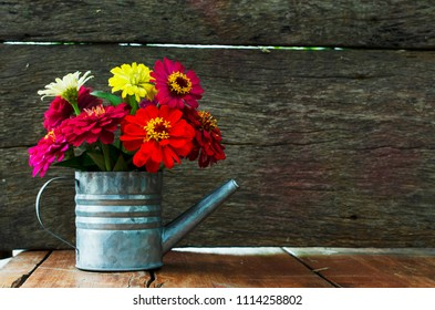 Colorful flowers with watering Can flower pot on wood backgrounds