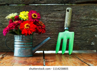 Colorful flowers with watering Can flower pot  and graden tools on wood backgrounds