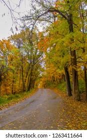 Colorful Foliage at Pere Marquette State Park in Grafton Illinois