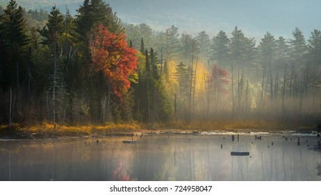 Colorful foliage reflected in a pond on a misty morning in the Adirondacks in early autumn