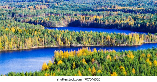 Colorful forest background with lakes in Finland during autumn