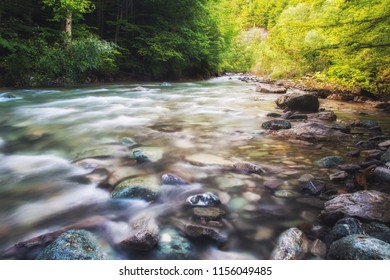 Colorful forest with beautful river in the Carpathian mountains in Romania