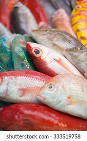 Colorful fresh fish for sashimi at fish market in Japan