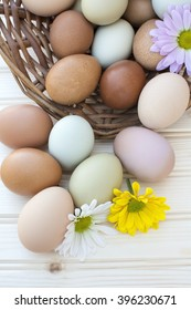 Colorful fresh organic chicken eggs overflow out of old dusty basket with chrysanthemum flower on wooden background, Selected focus organic chicken eggs overflow out of the basket