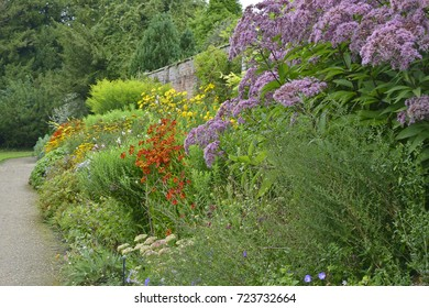 Colorful garden border with mixed planting and a Large Eupatorium maculatum, Solidago 'Golden Showers' and Helianthus 'Lemon Queen'