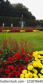 Colorful Garden with Yellow and Red Flowers and a Fountain