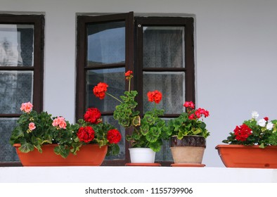 Colorful geraniums in the balcony in Romania