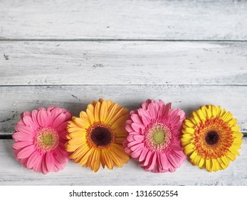colorful gerbera daisy flowers on wooden table