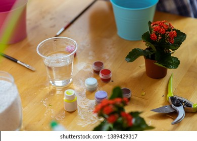Colorful gouache. Close up of colorful gouache standing near glass with water and flowerpot with red flowers