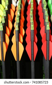Colorful group of archery arrows shows fletching which are plastic vanes or feathers  topped by the nocks which are the slotted plastic tips that snaps onto the string and holds the arrow in position.