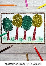 Colorful hand drawing and crayons: deciduous trees. Spring forest.