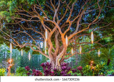 Colorful Hawaiian Banyan Tree with lights, fire, and tropical island flowers.